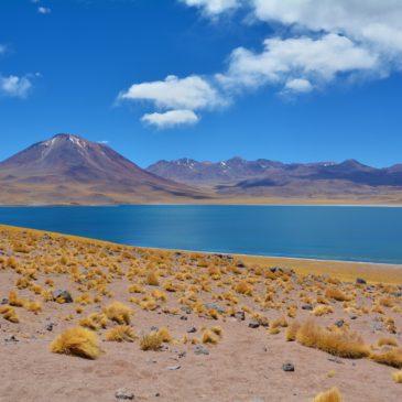 Dal Deserto di Atacama ai ghiacciai della Patagonia – Itinerario di viaggio in Cile (parte I)