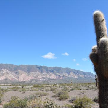 Le Valli del Calchaquí: verso Cachi attraversando l'Argentina andina