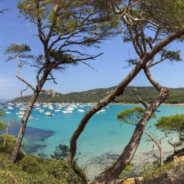 L'Isola di Porquerolles, un paradiso caraibico nel sud della Francia