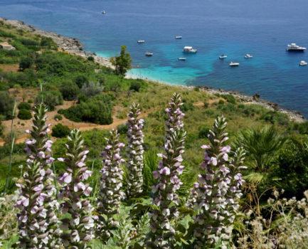 La Sicilia che non ti aspetti: trekking nella selvaggia Riserva dello Zingaro