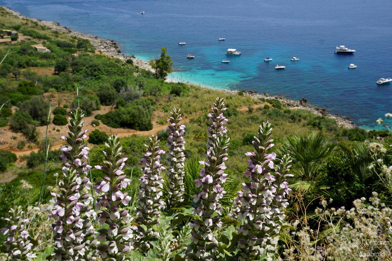 Trekking nella selvaggia Riserva dello Zingaro: la Sicilia che non ti aspetti