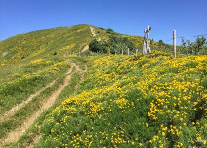 Trekking sul Monte Ebro: 3 percorsi per raggiungere la vetta