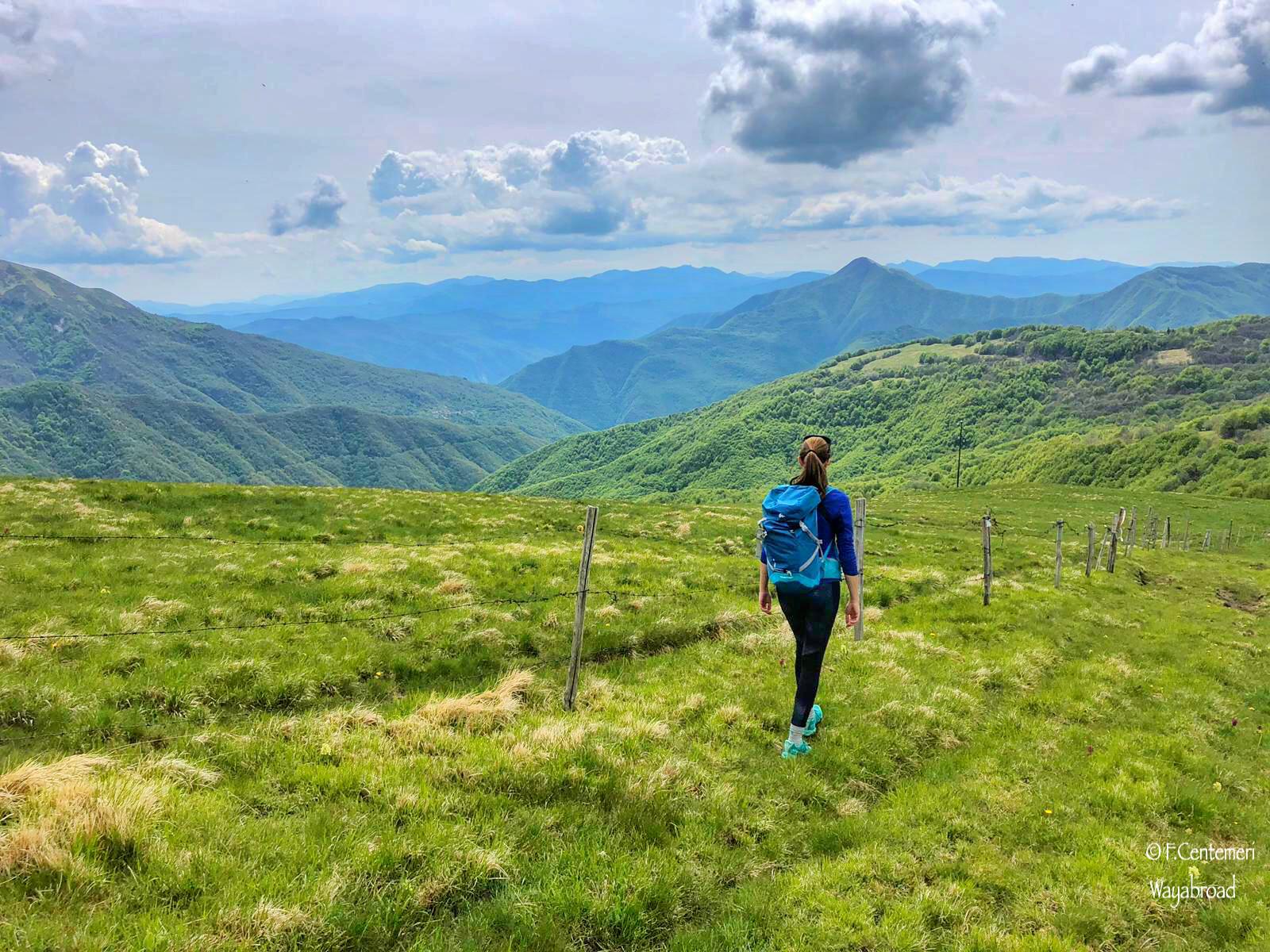 Monte Chiappo: 3 itinerari escursionistici per raggiungere la vetta!