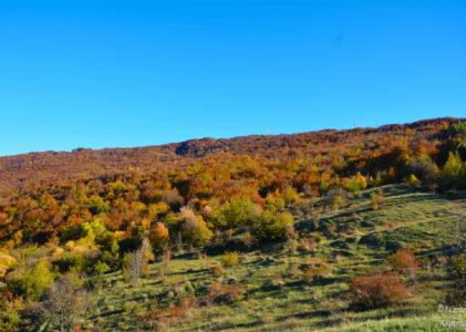 3 (facili) trekking per la vetta del Monte Giarolo