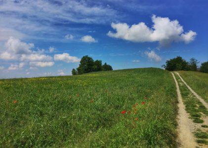 A piedi per i sentieri di Castellania, a casa di Fausto Coppi