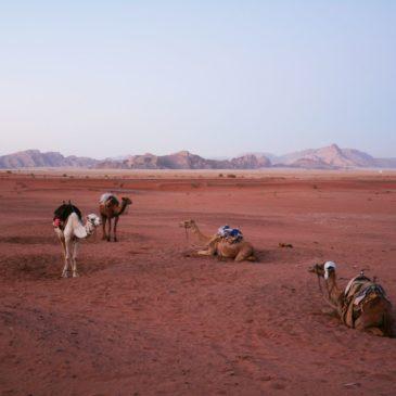 Weekend alla scoperta della Giordania